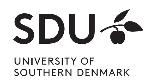 SDU - Syddansk Universitet